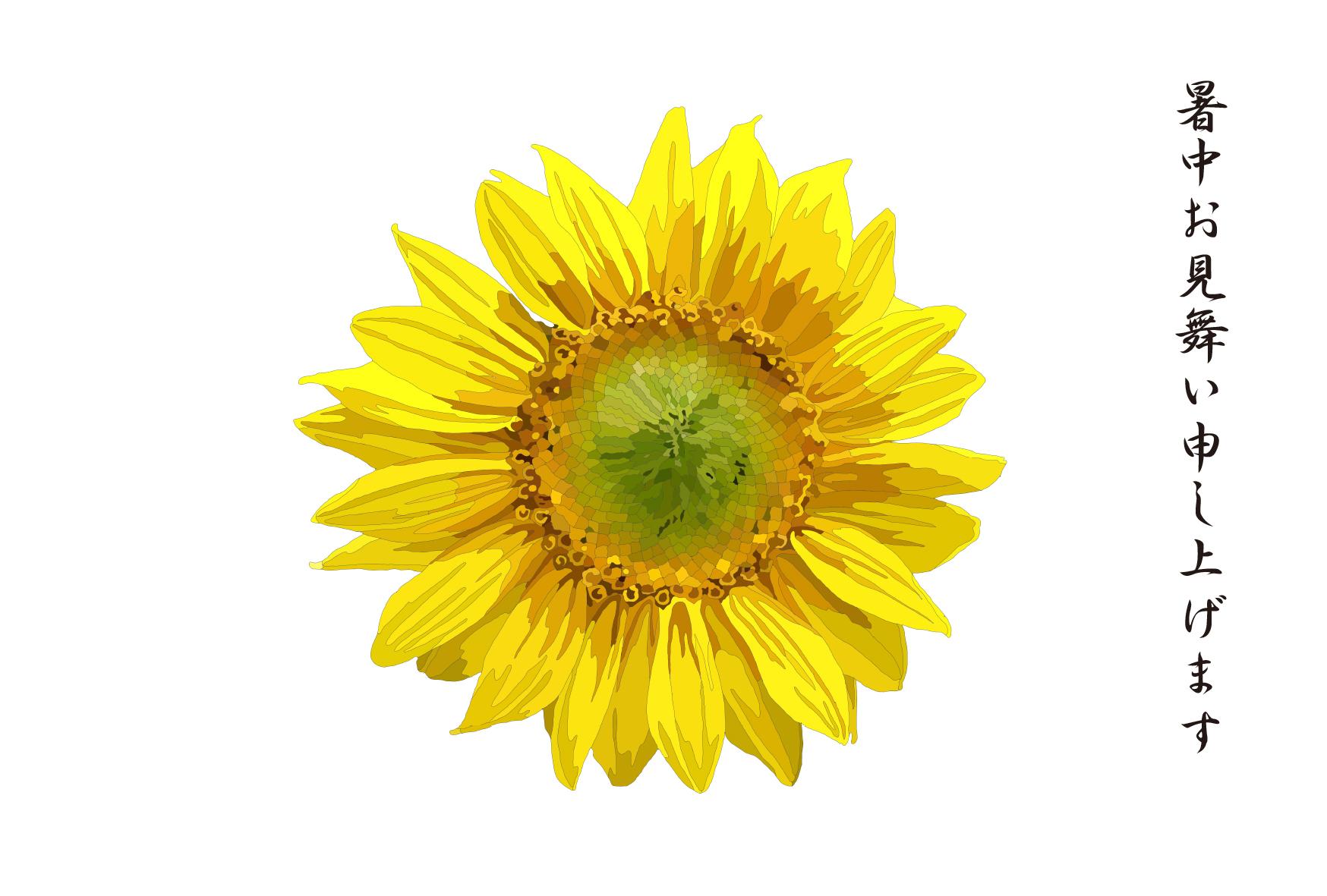 ひまわりのシンプルな暑中見舞いイラスト画像 向日葵 ヒマワリ 暑中お見舞い申し上げます